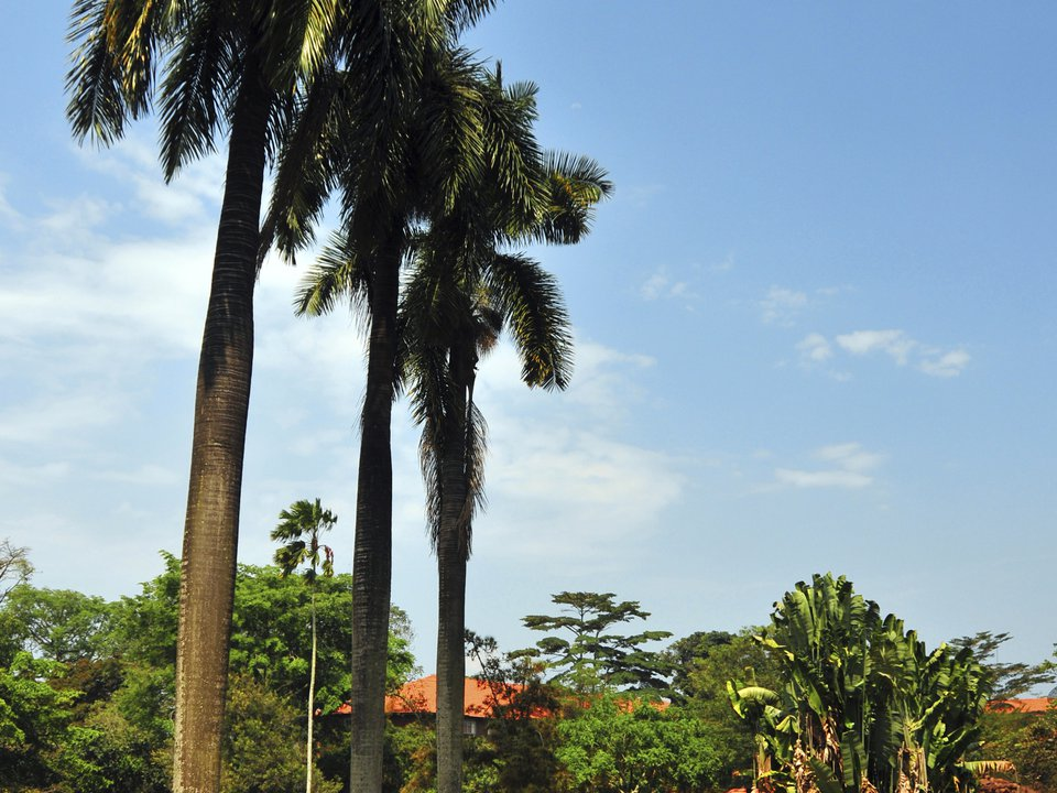 Uganda hotel search on booking