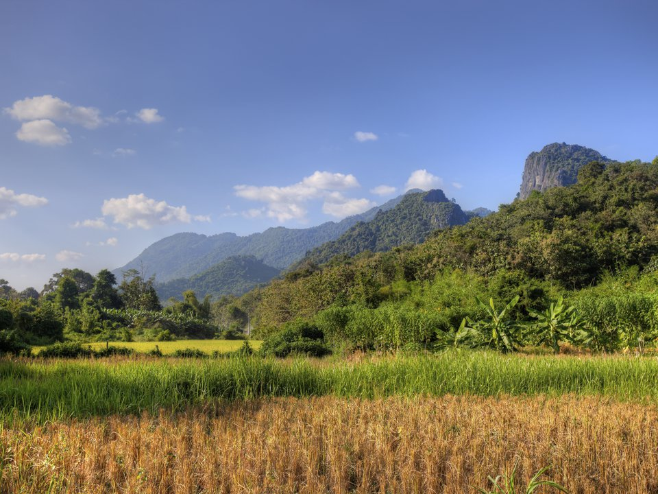Laos hotel search on site