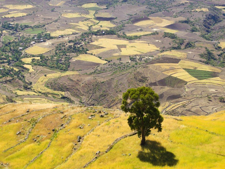 Эфиопия