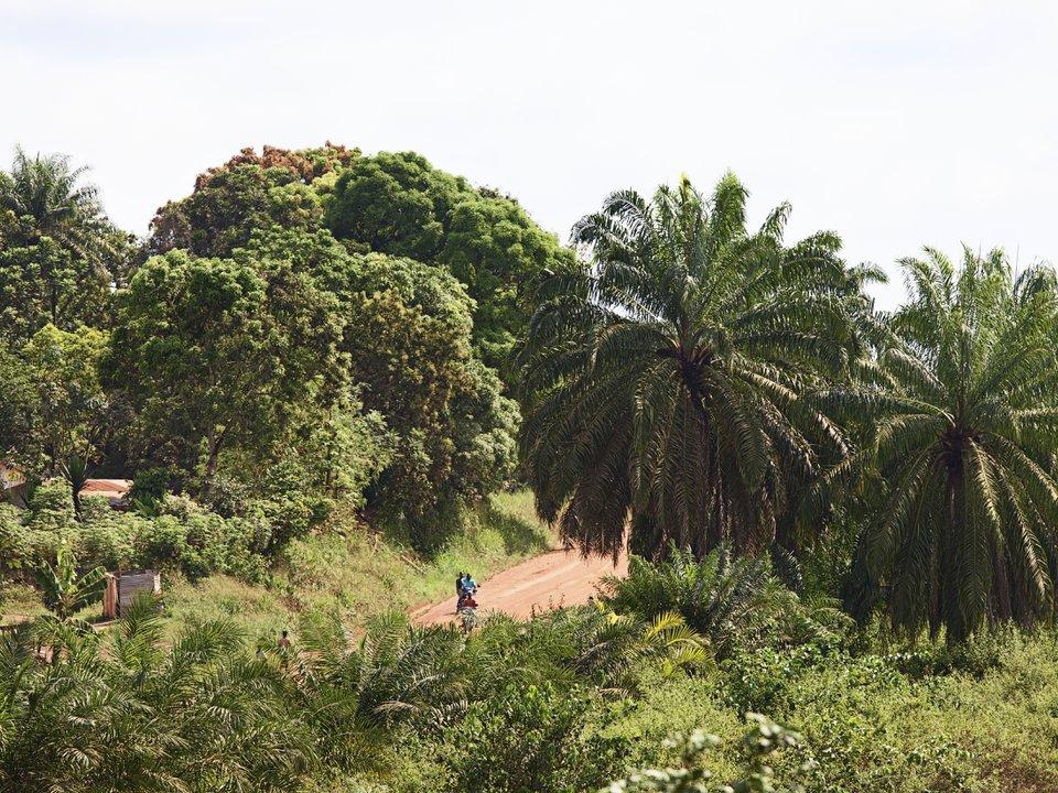 Либерия