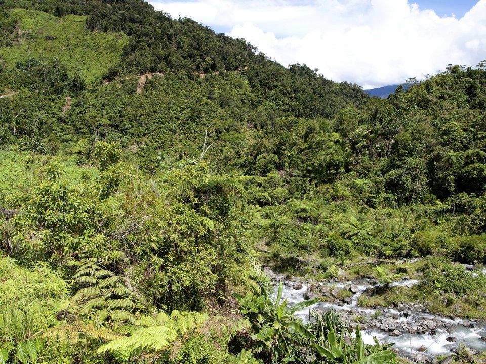 Экваториальная Гвинея