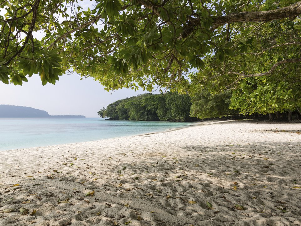 Vanuatu hotel search on booking